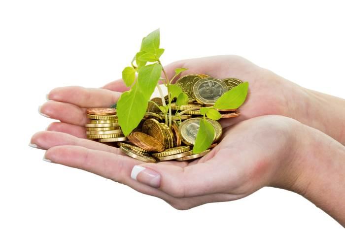 assurance vie - Capital-